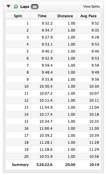 Yeesh! Look at those splits. The only 'negative' thing about them was how I felt with each mile!